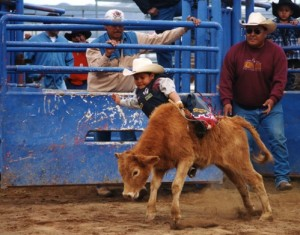 APACHE LESSON PLAN.  Photo- White Mountain Apache rodeo.