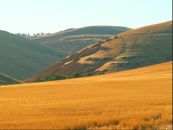 Crow's Shadow is located on the Umatilla rez in the gorgeous foothills of Oregon's Blue Mountains. Photo ICTMN
