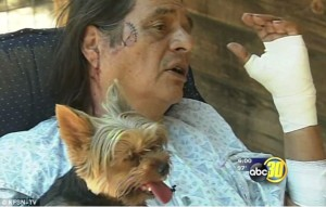 Lucky to be alive-Vietnam War veteran Larry Yepez, 66, says he has his Yorkshire terrier Benji to thank for helping him escape a vicious bear.