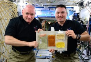 During the holidays in 2015, the crew aboard the Space Station enjoyed- Smoked Turkey, Candied Yams, Rehydratable Corn, Potatoes Au Gratin.