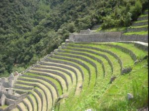 Inca Farming Terrace. Photo- Colin Glynn