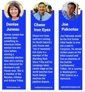 native-candidates-for-us-house-of-representatives